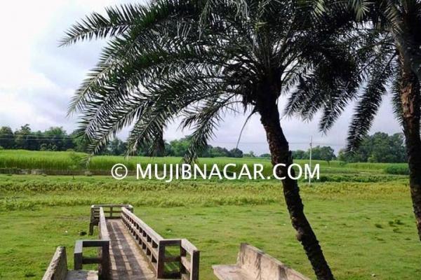 amjhupi-nilkuthi_011ABF91468-3F89-AAC7-BA24-F38583F38D2F.jpg
