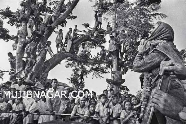 bangladesh-1971-war_025E0C3B827-D05A-A02A-5E6D-498F63B27001.jpg