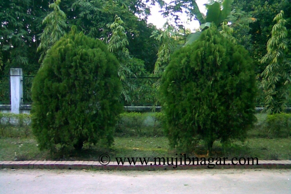 mujibnagar-memorial-monument-road-gerdenC966F934-5FA0-0865-1EF9-FFC746EA3C25.jpg