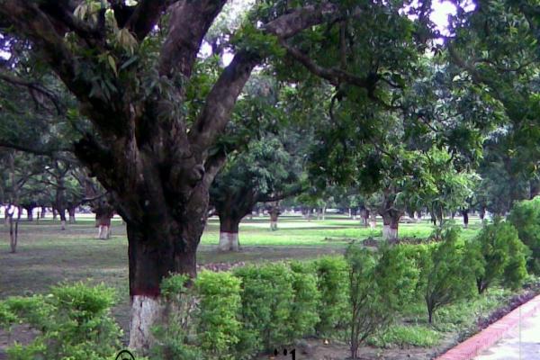 mujibnagar-memorial-monument-road202FC138-D3A4-80CE-C03D-80028B01F539.jpg